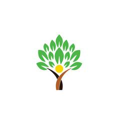 wellness people tree logo icon concept health vector image