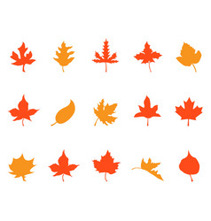 color autumn leaves patterns icons vector image