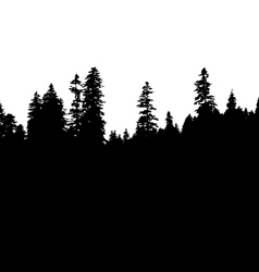 Panoramic view of the forest vector