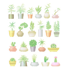 plant with pot colorful design set vector image