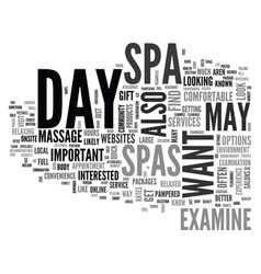 What to look for in a day spa text word cloud vector