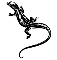 Black fast lizard reptile vector image vector image
