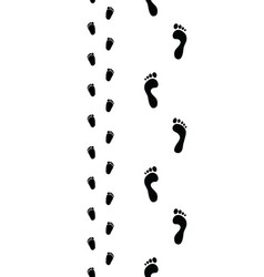 trail of feet seamless vector image vector image