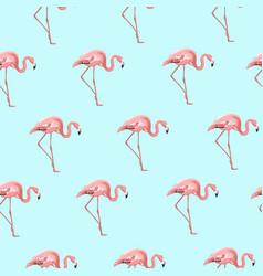 exotic pink flamingo bird on blue seamless pattern vector image
