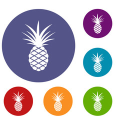 pineapple icons set vector image vector image