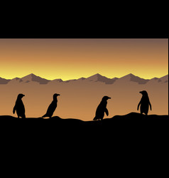 Collection stock penguin scenery silhouettes vector