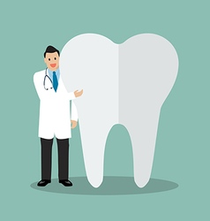 Dentist presenting the tooth vector