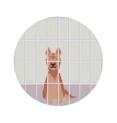 Dog in the shelter vector