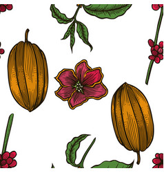 Seamless pattern of cocoa beans vector
