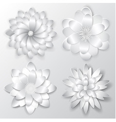 set paper flowers vector image