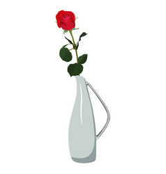 Single red rose in vase flat isolated vector