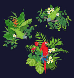 green parrots and red macaw on tree branch vector image vector image