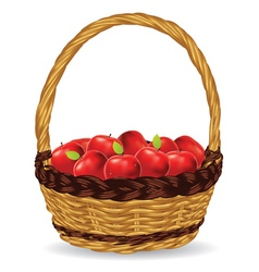 Basket of Red Apples2 vector image