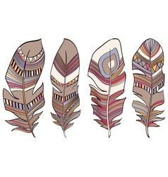 Ethnic Indian feathers plumage background vector image vector image