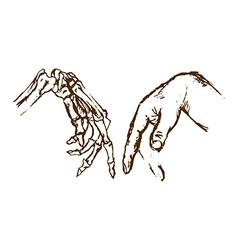 Hand skeleton vector image vector image