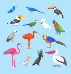 cartoon color exotic bird icon set vector image