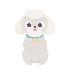 cute dog sitting domestic cartoon animal pets vector image