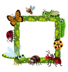Grass frame with many insects vector