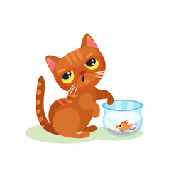 naughty kitten trying to catch aquarium fish vector image