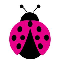 pink ladybug vector image