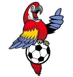 Red macaw bird stand over the soccer ball vector