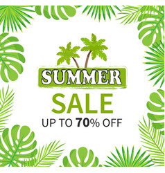 summer sale up to 70 percent palm tree banner vector image