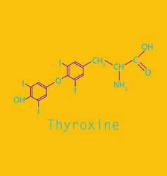 Thyroxine t4 levothyroxine thyroid hormone vector