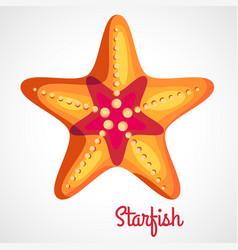 cartoon orange starfish vector image vector image