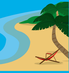 beach and summer design vector image