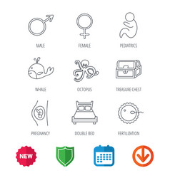Fertilization pregnancy and pediatrics icons vector