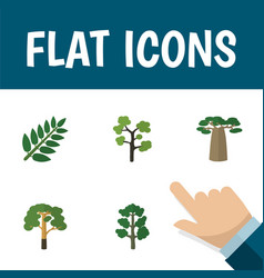 Flat icon natural set of baobab garden forest vector