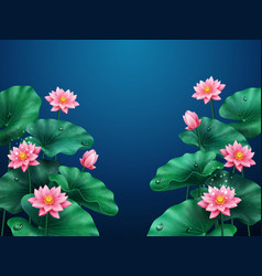 Lotus flower and leaves background on blue vector