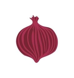 Onion healthy food organic food market icon vector