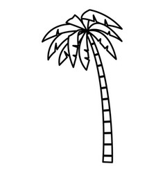 tree palm isolated vector image
