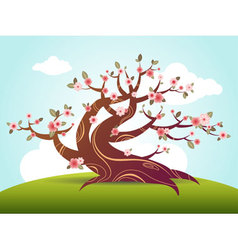 blossom cartoon vector image vector image
