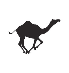 Camel silhouette vector image vector image