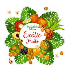 Exotic fruit and berry poster with tropical palm vector
