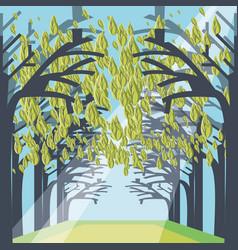 Pathway through a dense forest landscape vector
