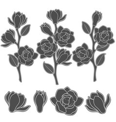 set of with flowering magnolia vector image