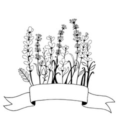 hand drawn banner frame with flowers lavender vector image vector image