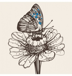 butterfly on a flower drawing vector image vector image