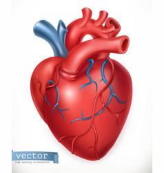 human heart medicine internal organs 3d icon vector image vector image
