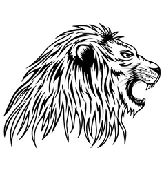 lion roars vector image vector image