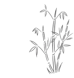 bamboo branches hand drawn vector image vector image