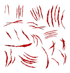 Claws scratches isolated on white vector
