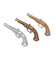 flintlock antique pistol color vintage vector image