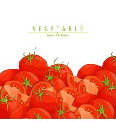 fresh ripe tomatoes vector image