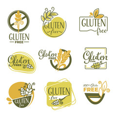 Gluten free products labels or emblems dieting vector