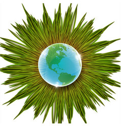 grass and earth vector image