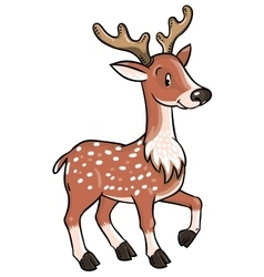 Lttle funny young deer or fawn vector